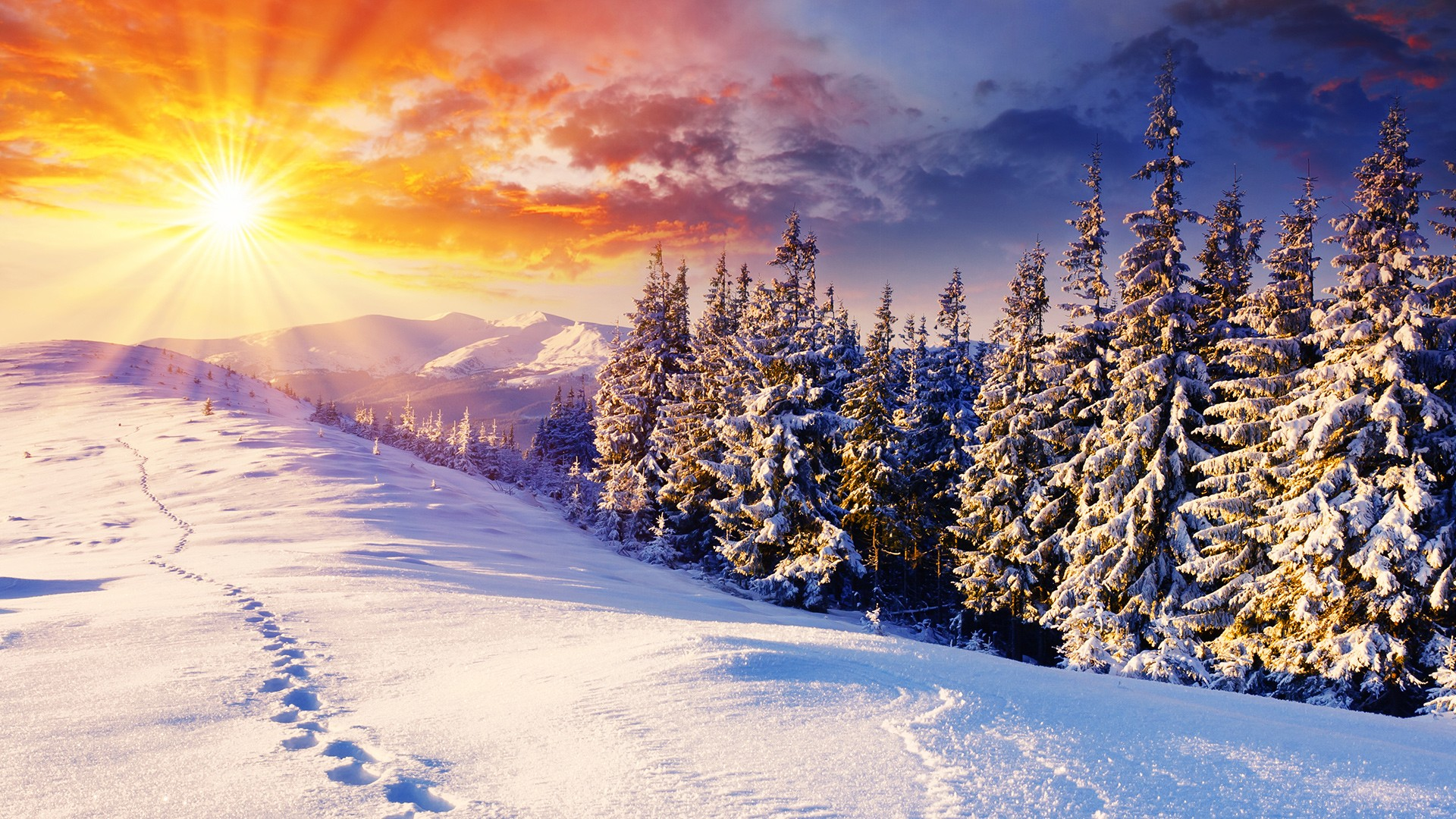 398689-best-winter-wallpapers-1920x1080-high-resolution.jpg
