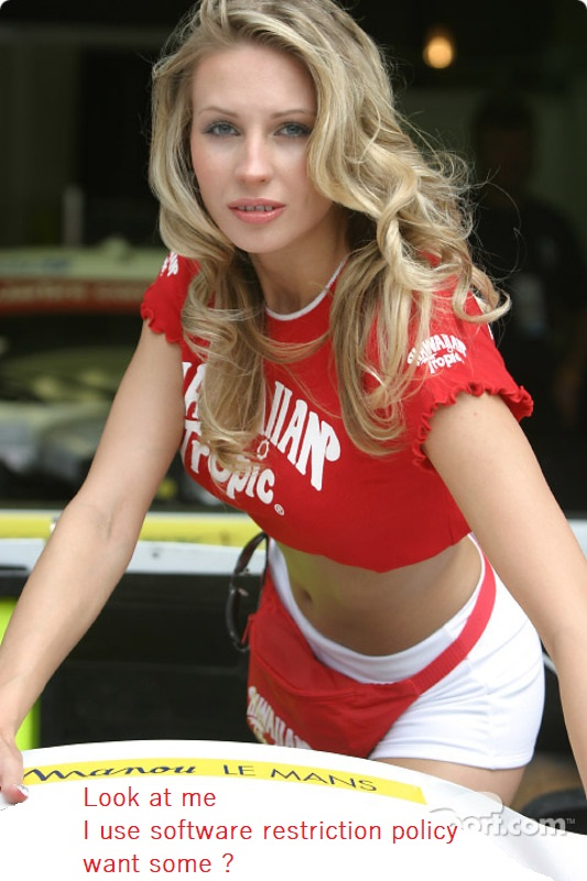 lemans-24-hours-of-le-mans-2004-an-hawaiian-tropic-girl-strikes-a-pose.jpg