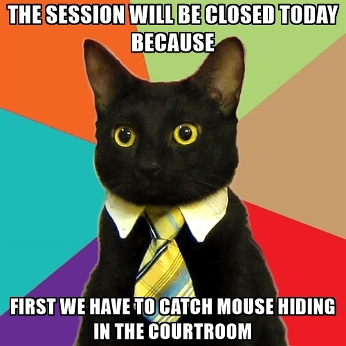 the-session-will-be-closed-today-because-first-we-have-to-catch-mouse-hiding-in-the-courtroom.jpg