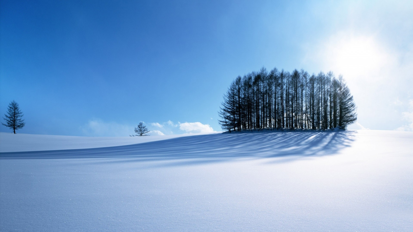 winter_scenery-1600x900.jpg