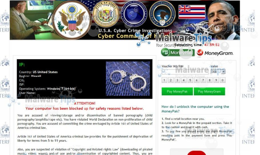 an analysis of cyber crimes in the united states