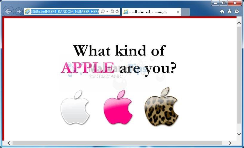 google chrome pdf not opening on mac