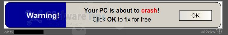 Picture of Warning! Your PC is about to crash! virus
