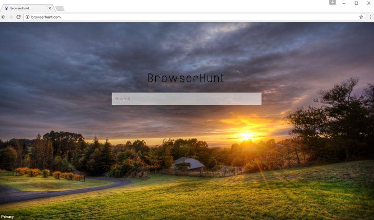 browserhunt.com homepage