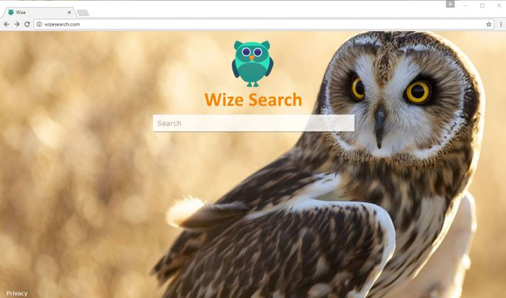 feed.wizesearch.com redirect