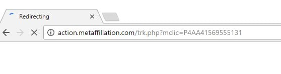 Action.metaffiliation.com Virus