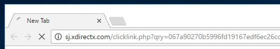 Sj.xdirectx.com virus