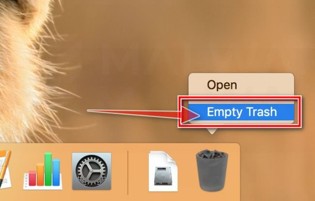 Right-click on Trash and select Empty Trash MacOS