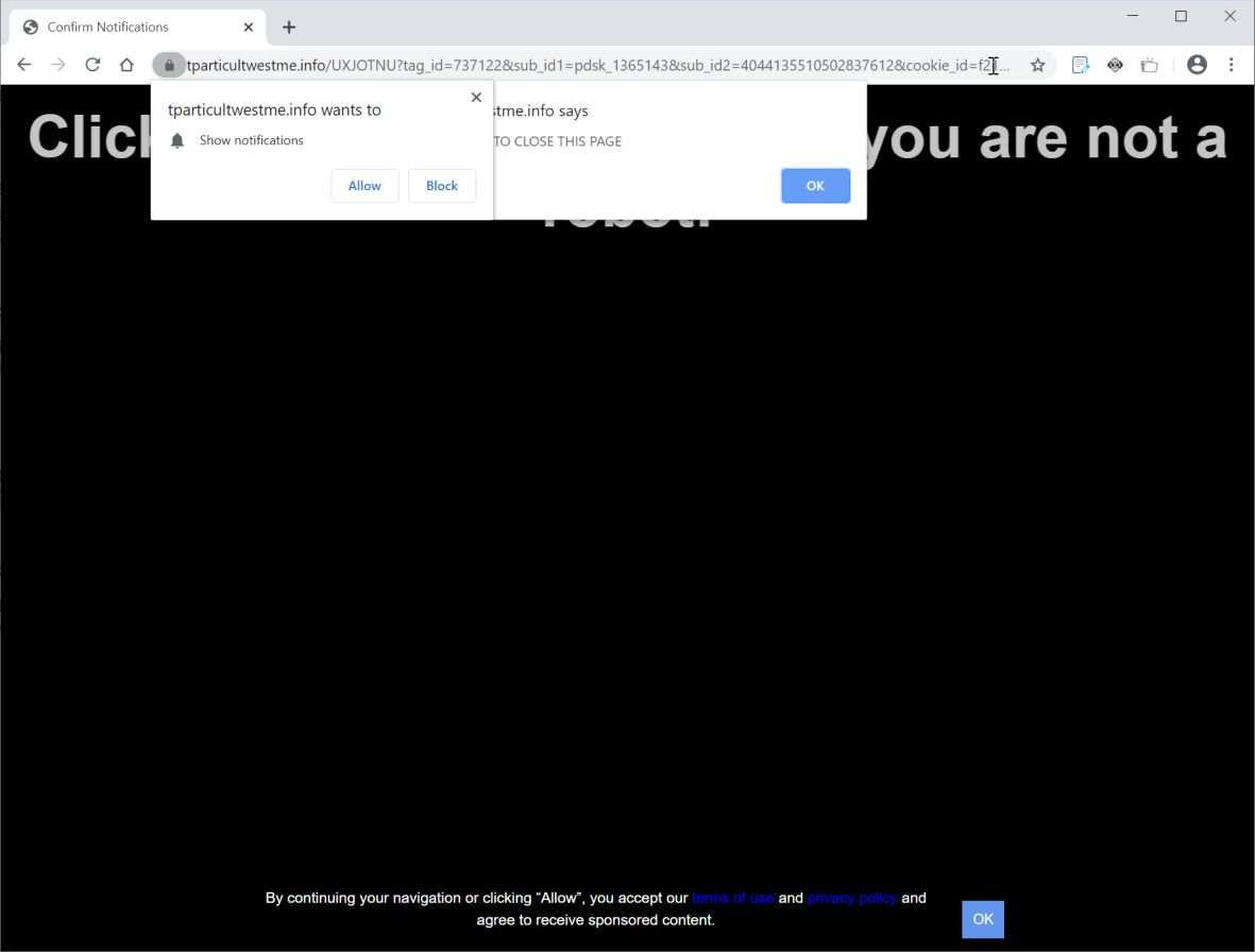 Image: Chrome browser is redirected to Tparticultwestme.info