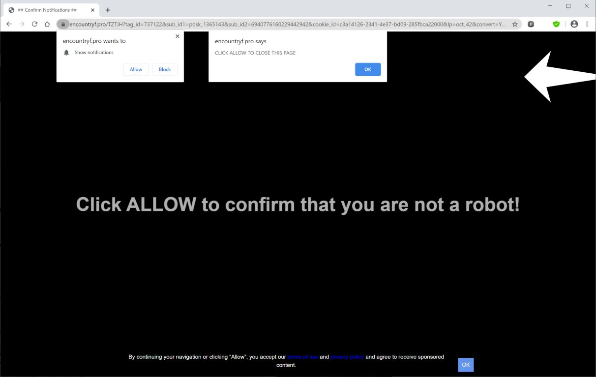 Image: Chrome browser is redirected to Encountryf.pro