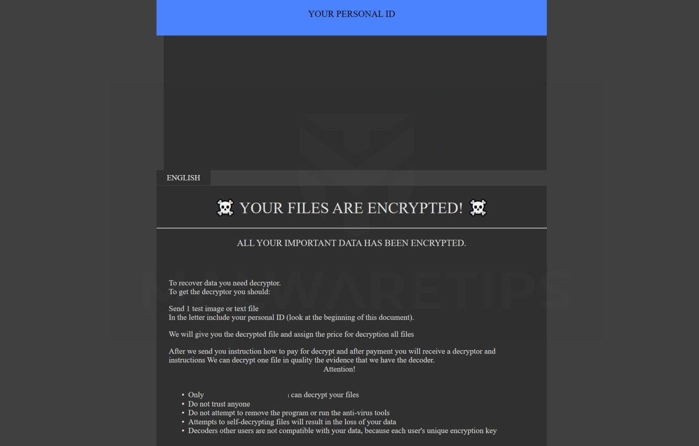 Hình ảnh: {indus37098@india.com}ZYX ransomware