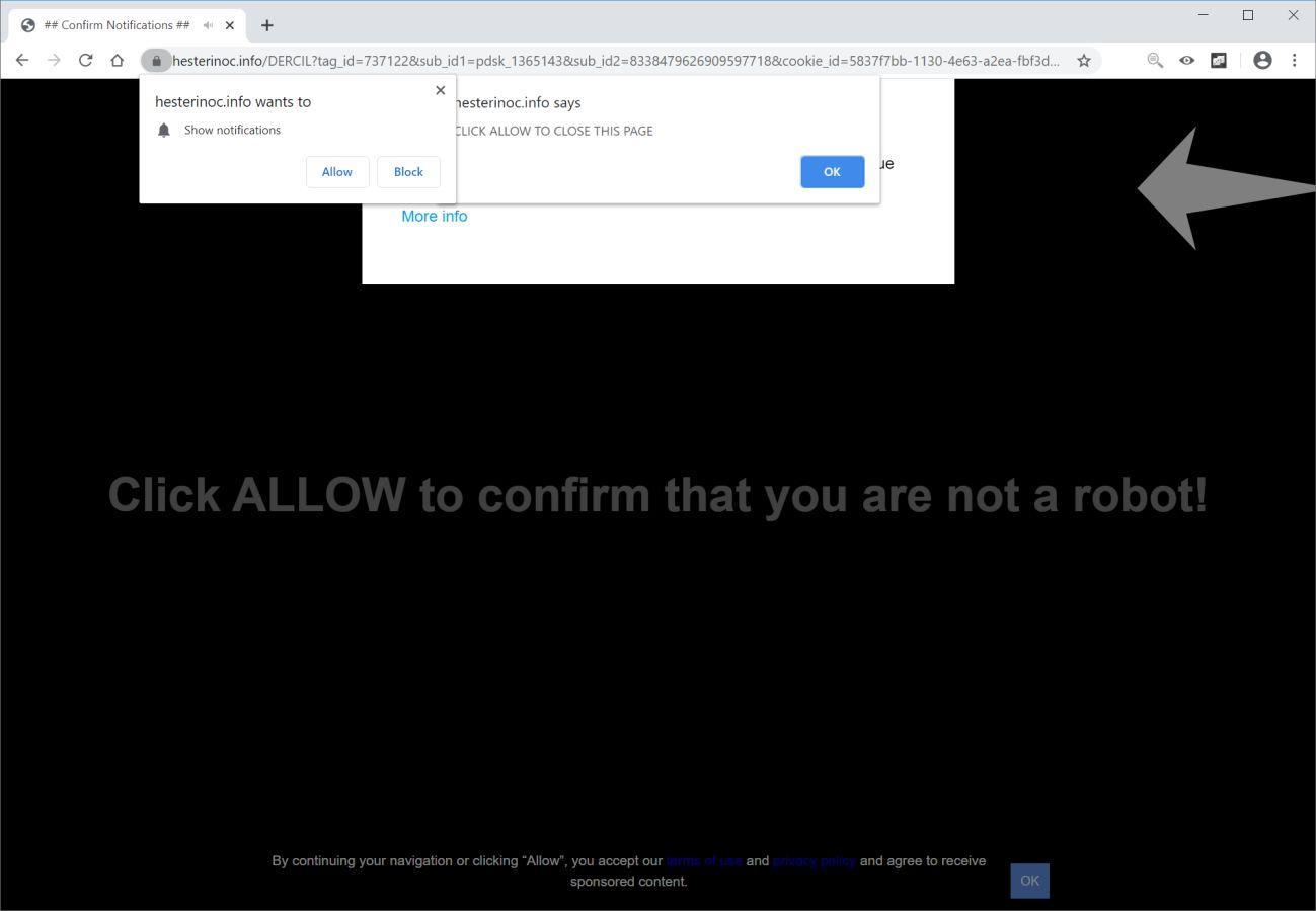 Image: Chrome browser is redirected to Hesterinoc.info