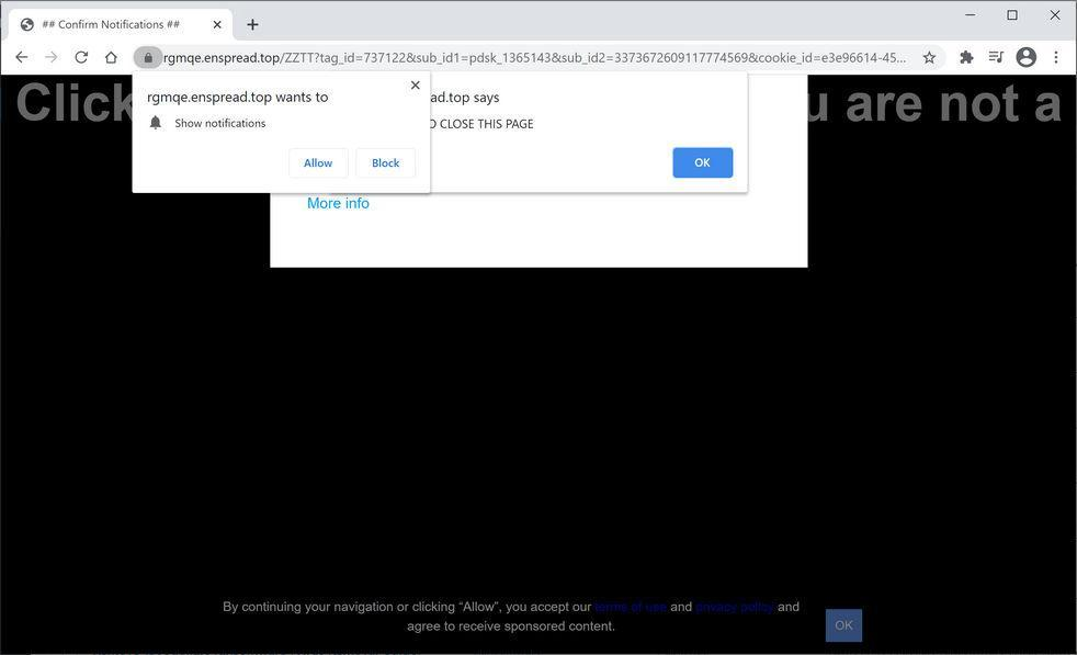 Image: Chrome browser is redirected to Enspread.top