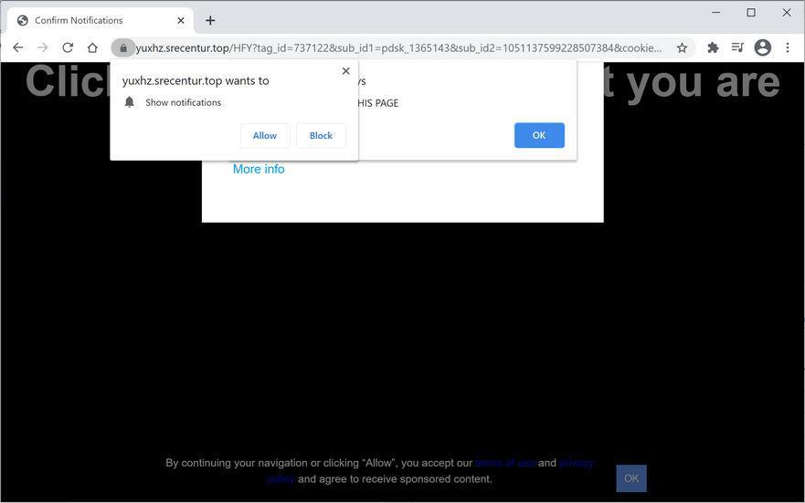 Image: Chrome browser is redirected to Srecentur.top