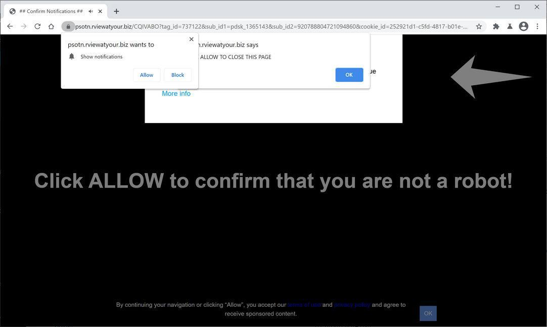 Image: Chrome browser is redirected to Rviewatyour.biz