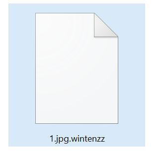 Image: Wintenzz ransomware