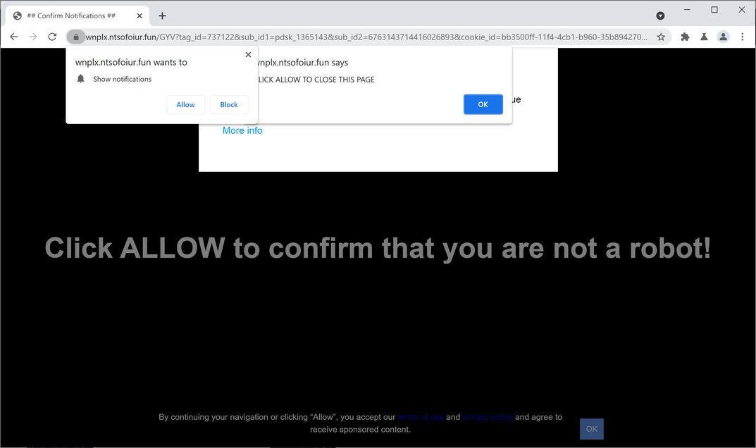 Image: Chrome browser is redirected to Ntsofoiur.fun