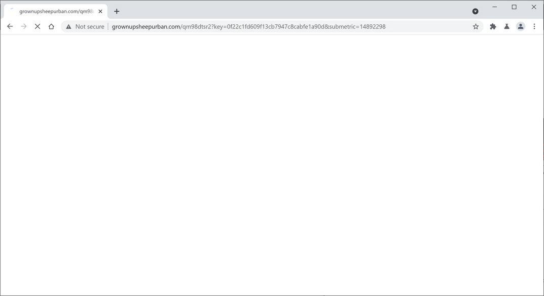 Image: Chrome browser is redirected to Grownupsheepurban.com