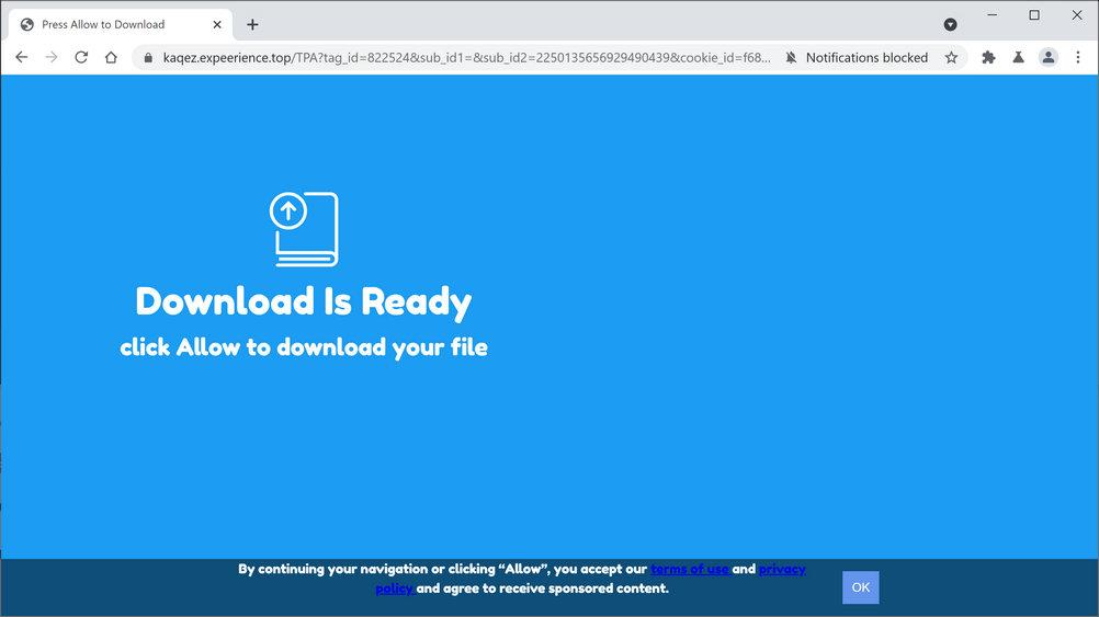 Image: Chrome browser is redirected to Expeerience.top