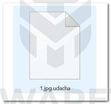 Image: Udacha ransomware