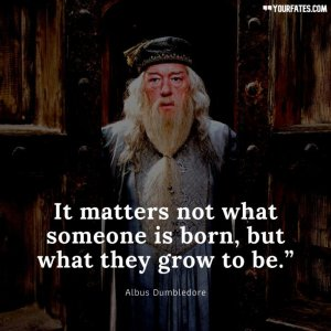 "It-matters-not-what-someone-is-born-but-what-they-grow-to-be.""-731x731.jpg"