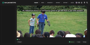 japanese bird show.png